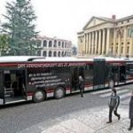 A Verona per far passare il nuovo filobus si tagliano gli alberi