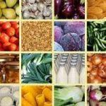 Alimentare, cresce il fatturato grazie all'export