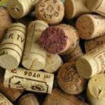 W il sughero, il senso della campagna di Slow wine