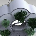 Ecoinvenzione: il giardino nel lampadario. Strano, ma vero!