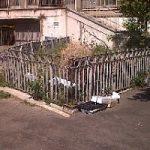 La foto della vergogna / Roma: l'ingresso del Mercato comunale dei fiori. E i fiori dove sono?