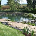 Quando il relax si fa ecologico, ecco la bio-piscina