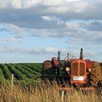 L'Agricoltura tiene in vita l'economia italiana
