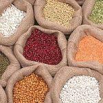 Alimentazione. I legumi 2 volte a settimana per fare il pieno di proteine