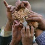 Diritto al cibo/2, nel 2014 saremo 8 miliardi. Cosa puo' fare l' agricoltura
