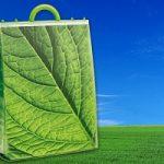 Biodegradabile? I tempi di decomposizione dei materiali piu' usati