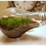 Nuovo video di Ecoseven.net: non tutto e' biodegradabile