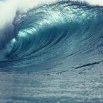 Oceani, come il lavaggio dei maglioni puo' alterare l'equilibrio della vita marina