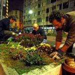 Citta', con il guerriglia gardening per riconquistare gli spazi verdi