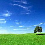 Giornata mondiale della Terra: le aziende stanno prendendo coscienza del tema ambiente