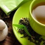 Benessere. Scopri i benefici del thè di betulla