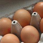 Alimentazione, uova fresche al supermercato? Come leggere le etichette