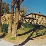 Vicchio, il paese di Giotto scommette sulle rinnovabili. Arte e energia si incontrano