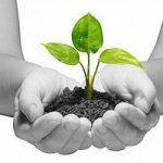 5 giugno, Giornata Mondiale dell'Ambiente: il decalogo del cittadino 'eco'