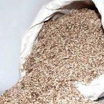 Bioedilizia: case in calce e canapa, l'esempio del Friuli