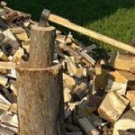 La Valle dell'Aniene scommette sulla biomasse legnose
