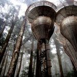 La casa sull'albero, per vivere a contatto con la natura