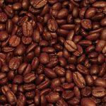 Caffè Arabica a rischio scomparsa, tutta colpa del fungo della ruggine