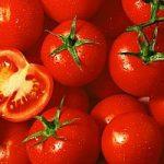 Pomodori biologici, più ricchi di vitamina C