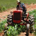 Al via la semplificazione del lavoro agricolo