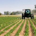Maltempo: agricoltura a rischio