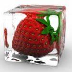 No allo spreco di cibo: i consigli per conservare gli alimenti in estate