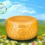 Parmigiano Verdiano, il formaggio tutto vegetale