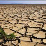Biologico, per combattere la desertificazione dei suoli