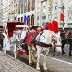 New York: addio carrozze,arrivano le auto elettriche d'epoca