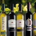 Il vino italiano La Delizia alla conquista di Mosca