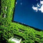 Sviluppo sostenibile: Enea propone Eco-etichette, Tares piu' verde e efficienza edifici