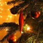 Come smaltire l'albero di Natale?