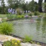 Voglio un eco-lago in giardino…