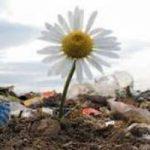 Denunciamo i reati ambientali e diventiamo Agenti segreti dell'Ambiente