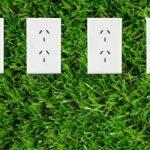 Produrre energia pulita dalla coltivazione delle piante