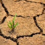 Contro la desertificazione, un sistema per ricaricare le falde acquifere