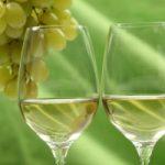 Vinitaly: ecco il falso Verdicchio, un vino non vino