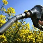 Mobilita' sostenibile: obbligo a rete rifornimento carburanti alternativi