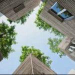 Case per gli alberi: un progetto per aumentare gli spazi verdi in citta'