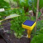 Ecoinvenzioni: la sonda solare che aiuta a coltivare l'orto