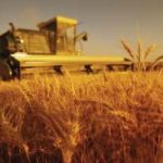 Arriva l'agricoltura ecologica 2.0