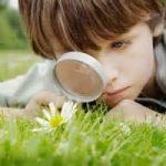 Perche' e' cresciuta la sensibilita' ambientale? Infografica