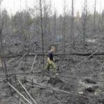 Incendio in Svezia, in fumo 15mila ettari di foresta