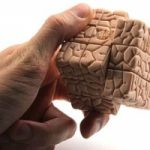 I brutti ricordi? Si possono manipolare e cancellare..