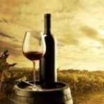 Vinincontro 2014: torna la rassegna del vino