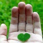 CompraVerde-BuyGreen: 2 giorni di forum a Roma su acquisti verdi e green economy