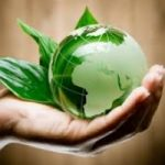 Titoli di efficienza energetica: il nuovo incentivo al mondo dell'immobiliare