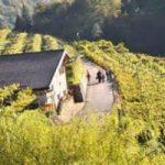 DivinOttobre, in Trentino appuntamento con l'autunno