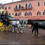 A cavallo da Monaco a Verona. Andreas Nemitz inaugura Fieracavalli