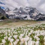 Trentino: piu' cammini, meno paghi